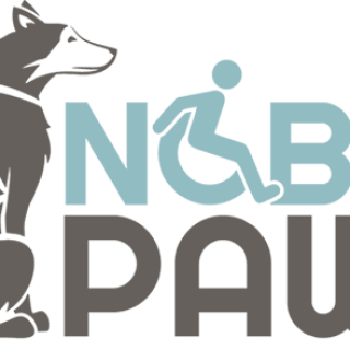 Nonprofit Dog Mushing